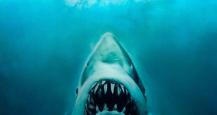 dents-de-la-mer-2985